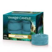 Yankee Candle Moonlit Cove Teljus/Värmeljus
